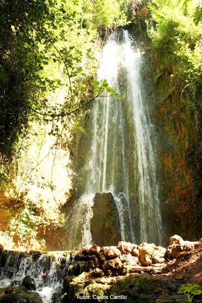 el_agua.png